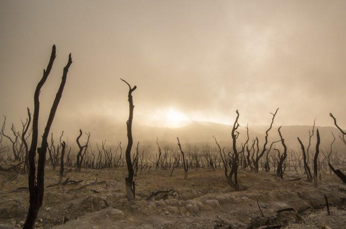 Que faut-il savoir sur le réchauffement climatique ?
